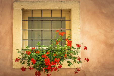 Red flowers in  window of old building in Italy