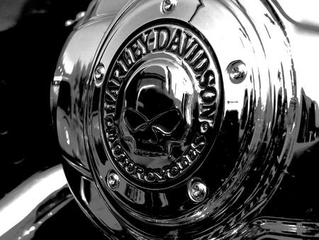 Czarnkw, POLAND - September 13, 2014: A logo of Harley-Davidson