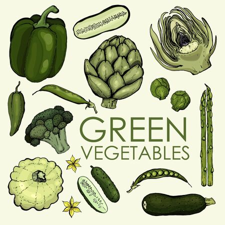Set of hand drawn green vegetables on a beige