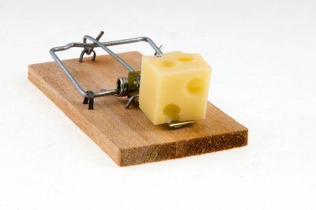 piege souris: Pi�ge � souris avec du fromage.  Banque d'images
