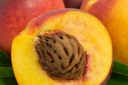 pits: nectarine fruits with pits and leaves. close-up Stock Photo