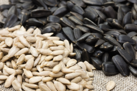 Unrefined sunflower seeds and peeled husks piled on rough fabric