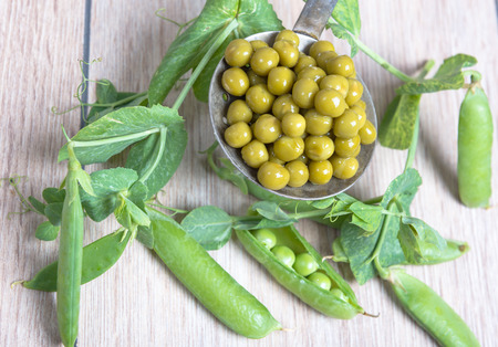 Boiled green peas on a slotted spoon, pods and branches