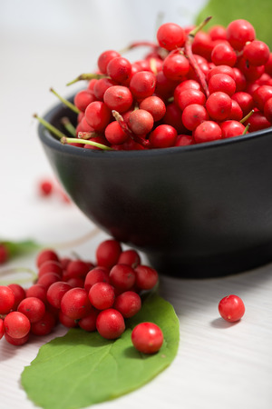 chinensis: Schisandra chinensis or five flavor berries
