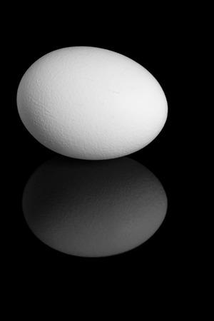 single white egg on a black background