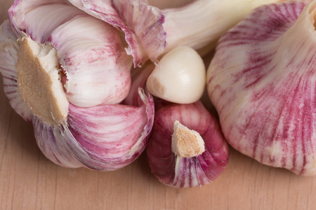 garlic - clove and head of garlic on a wooden table