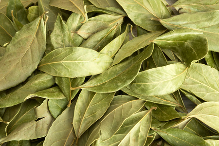 Dry bay leaves scattered on the wooden table