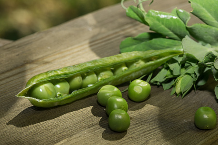 peas in a pod: fresh green peas - pod, pea and leaves Stock Photo