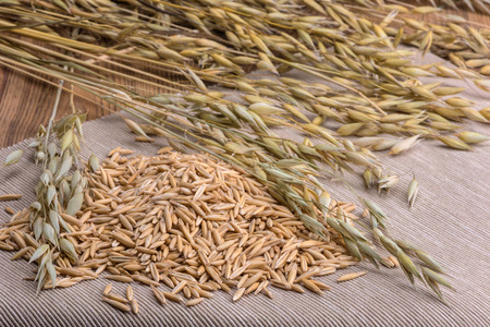 grain oats and ears scattered on a napkin