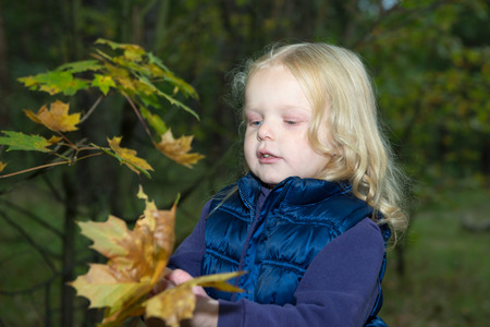 four-year girl playing with autumn leaves in the forest