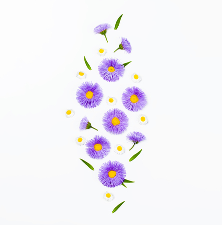 Floral pattern made of violet asters, green leaves and chamomile on white background. Flat lay. Top view.