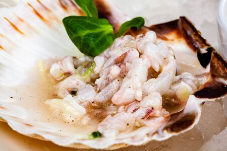 Ceviche. Finely chopped raw squid marinated in lemon juice served in seashell.