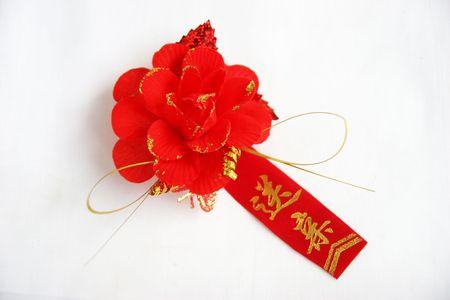 brooch: Brooch, keepsake, red, logo, Stock Photo