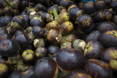 toddy palm: Fresh palmyra palm or toddy palm fruit. Editorial