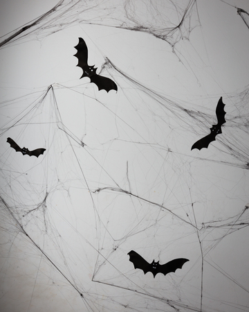 concrete background: Concrete wall with cobweb and bat decorations.