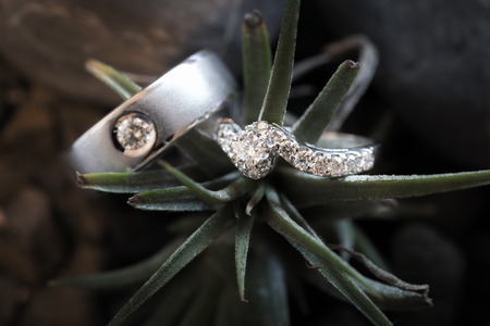 weddingrings: Aerial view of beautiful wedding rings with decorations. - (Macro shot) Stock Photo