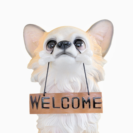 plate: Puppy dog doll holding a wooden plate with word welcome sign on isolated white background.