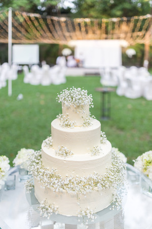 Beautiful wedding cake in the garden.