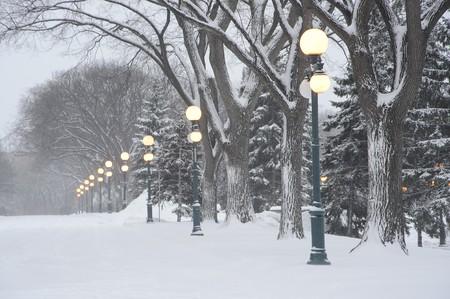 legislature: wintery road during storm at dusk at Manitoba Legislature building