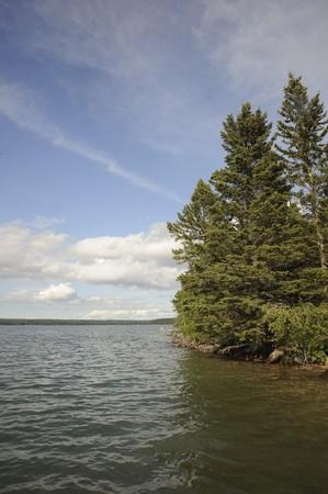 lake edge at Clear Lake in Riding Mountain National Park, Manitoba, Ca.