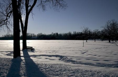 assiniboine: Winter field at dusk