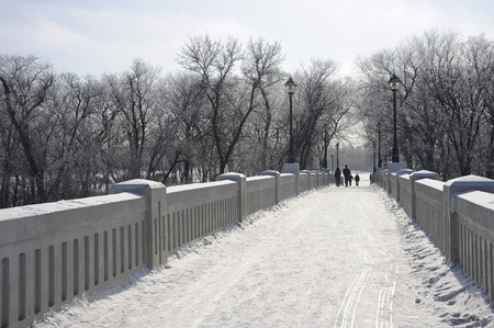 assiniboine: Foot bridge at Assiniboine Park, Winnipeg, Manitoba,