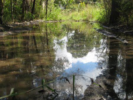 eau de pluie: L'eau de pluie