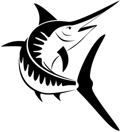 Jumping marlin illustration on white background