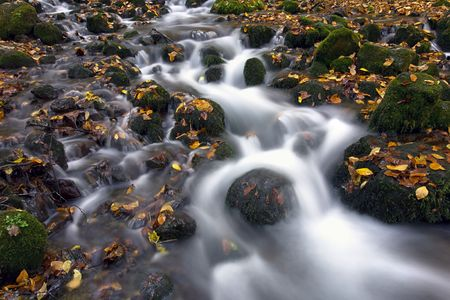 soften: waterfall with autumn leaves taken with long exposure to smooth and soften water