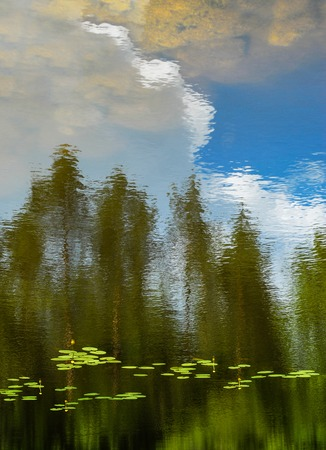 surrealistic: Reflections in water with trees in the background Stock Photo