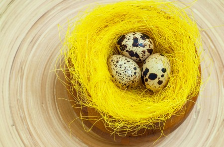 Quail eggs in yellow nest. Easter, Spring holidays Stock Photo