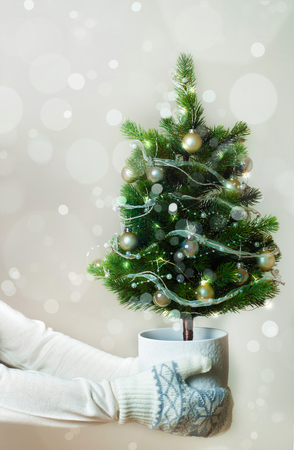 Woman hands with mittens holding decorated christmas tree, holidays concept.