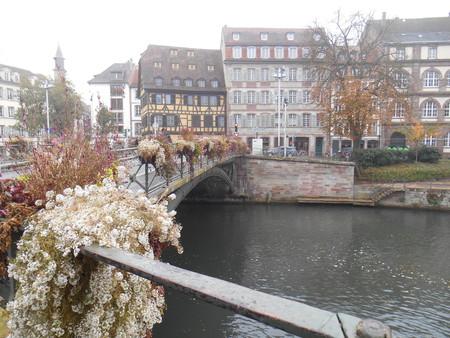 strasbourg: Les fleurs � Strasbourg Editorial