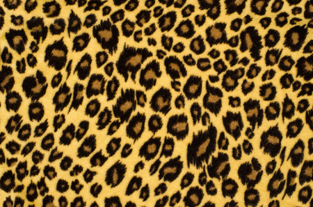 Brown leopard fur pattern. Spotted animal print as background. Banco de Imagens