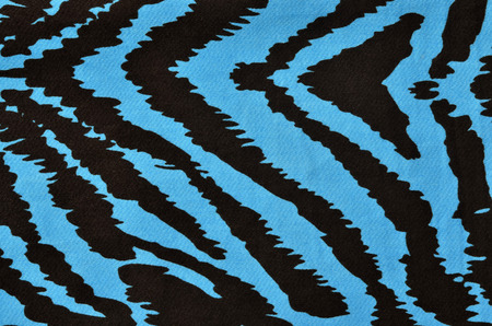 zebra: Blue and black zebra pattern. Magenta animal print as background.