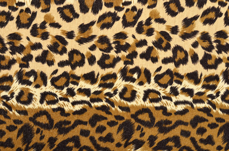 spotted: Spotted animal print as background.