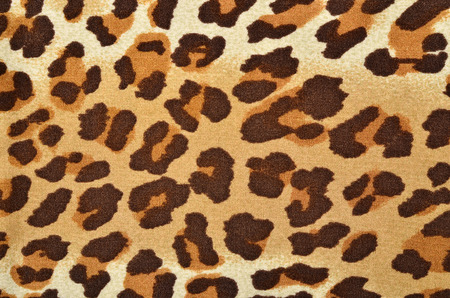 Spotted animal print as background.