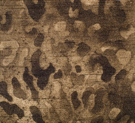 animal fur: Brown leopard fur pattern. Spotted animal print as background. Stock Photo