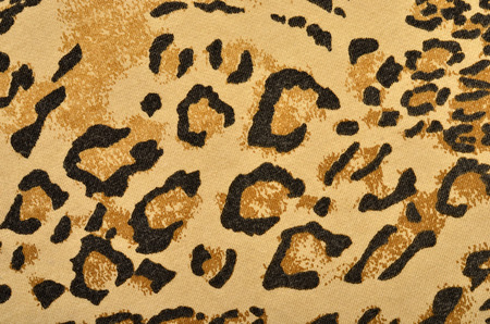 leopard fur: Brown leopard fur pattern. Spotted animal print as background. Stock Photo