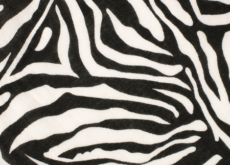 zebra pattern: Black and white zebra pattern on fabric. Black and white zebra pattern on fabric.