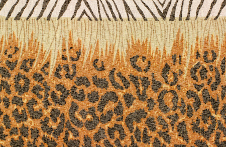 spotted fur: Brown and black leopard fur pattern. Leopard print and a stripe of zebra print. Spotted animal print as background.