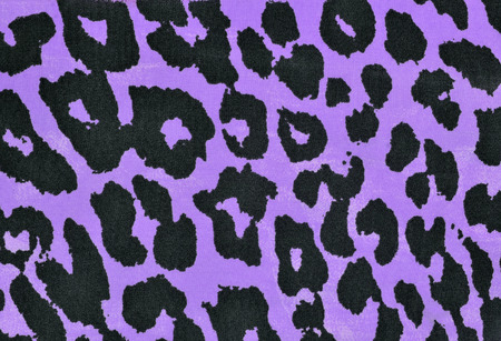 spotted fur: Black and purple leopard fur pattern. Spotted animal print as background.