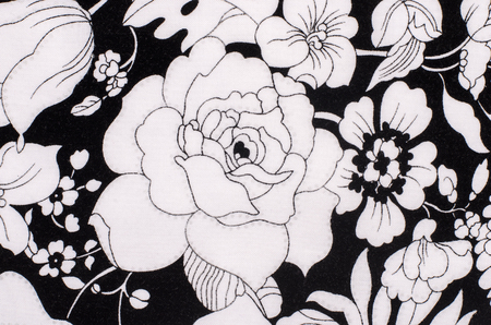 Graphic floral pattern on fabric black and white flowers print graphic floral pattern on fabric black and white flowers print as background stock photo mightylinksfo