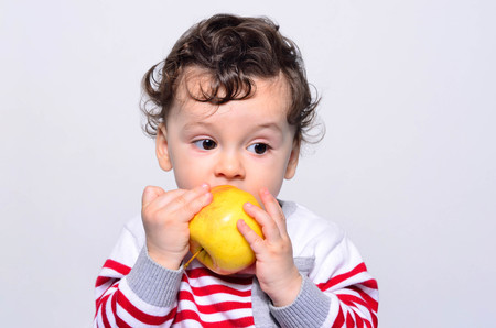 Portrait of a cute baby eating an apple. One year old kid eating fruits by himself. Adorable curly hair boy being hungry biting on a big red apple.