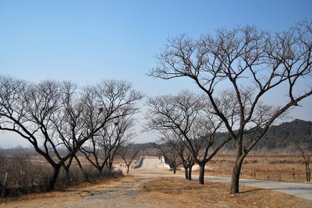 tumbas: La manera de Tumbas Ming