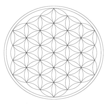 Grid for crystal meditation