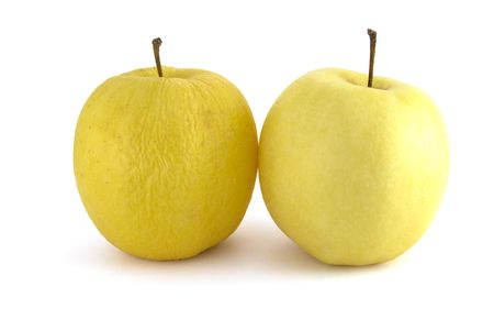 wrinkled and fresh apples isolated on white background Stock Photo - 4829427