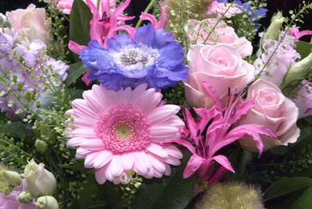 Beautiful pastels flower bouquet: gerbera, scabious, rose photo