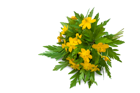 lowers: buttercups  bouquet
