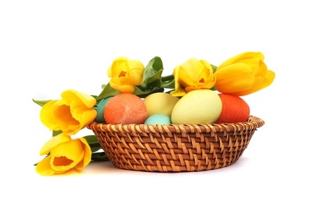 Colorful easter eggs in basket and tulips isolated on white photo